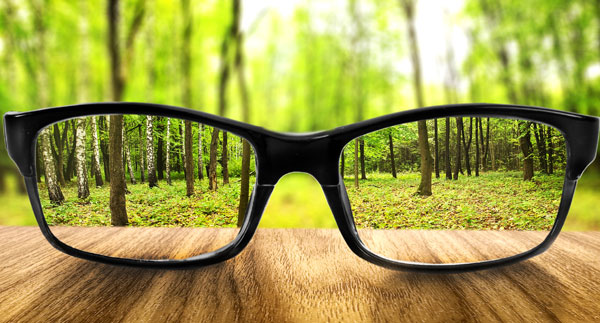 bigstock-Clear-forest-in-glasses-on-the-54563738